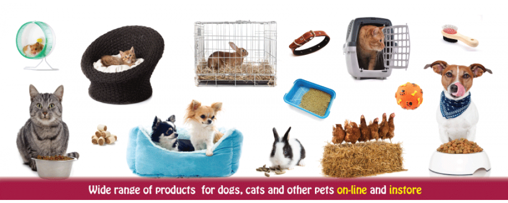 DoLittle Pet Supplies, Surrey, order online