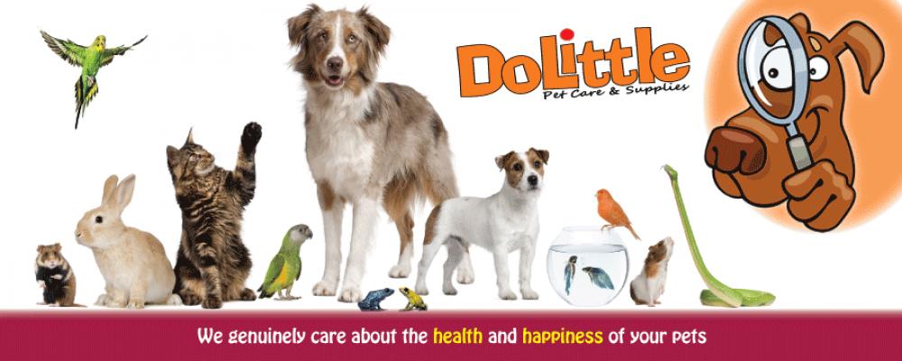 DoLittle Pet Supplies, Surre
